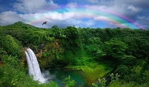 カウアイ島が世界一雨が降る島って誤解しないで!