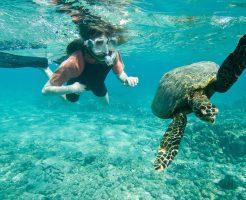 カウアイ島でシュノーケルするなら、このビーチ(^^)